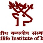 Wildlife Institute of India Recruitment 2016 for Project Assistant || Last date 27th April 2016